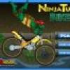 אופנוע צבי הנינג'ה