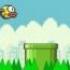 Flappy Bird פלאפי בירד